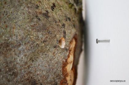Fixer vos souches de bois aux murs pour vos photos