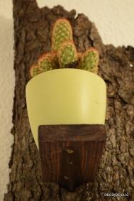 Comment créer une décoration murale avec des cactus originale